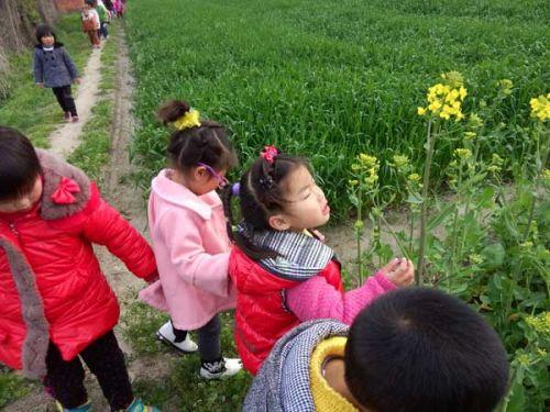 建设幼儿园开展野外踏青活动:野外踏青