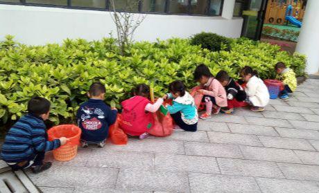 """光华幼儿园开展""""五一""""劳动节主题教育活动"""