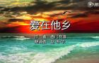 赵韦华:《爱在他乡》