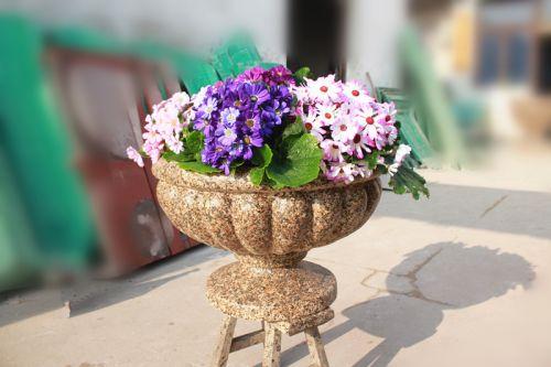 从花盆开口看:有长方形的,正方形的,圆形的,椭圆形的,六角形的等等,花