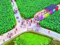 平园池村举行开园仪式