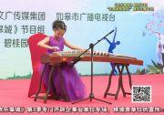 """《欢乐皋城》特别节目—""""比高新能源杯""""器乐比赛专场(下)"""