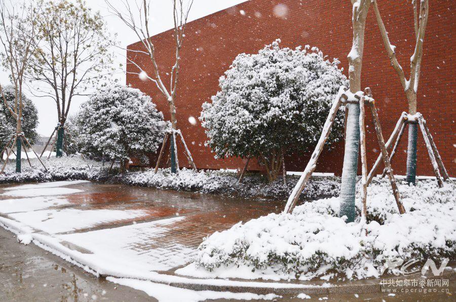 北外附属龙游湖外国语学校冬日雪景