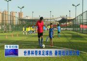 世界杯带来足球热 暑期培训班火爆
