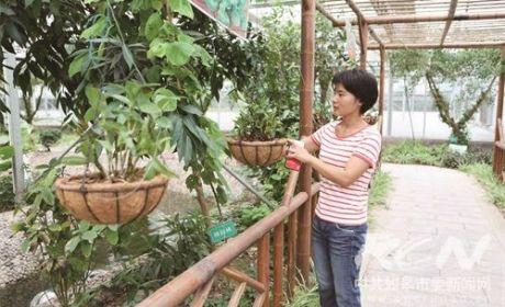江苏北环生物科技有限公司确认可在长江流域发展铁皮石斛种植与深加工产业