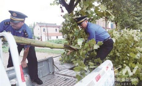 """有效应对台风""""温比亚"""""""