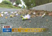 """台风""""山竹""""对我市影响不大"""