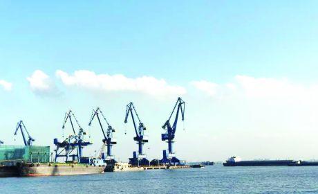 长江镇滨江临海引领经济高质量发展