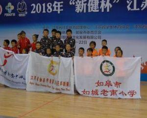 如城老南小学参加江苏省跳绳锦标赛喜获佳绩