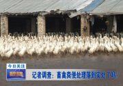 记者调查:畜禽粪便处理落到实处了吗?