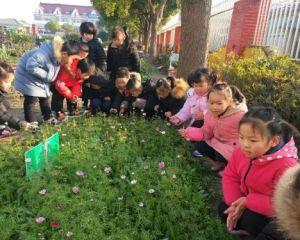 高新区桃园幼儿园:与大天然的美好邂逅