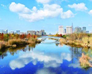 如皋:一个真正有魅力的城市应该是四季常美的地方