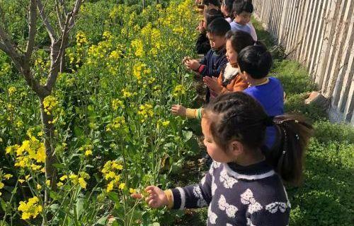 寻找春天,拥抱自然——如城新民幼儿园