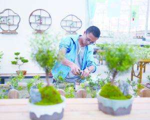 """如皋工业园区(如城街道)的""""花名堂""""专门打造微型盆景"""