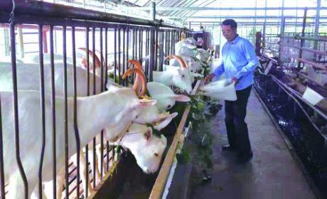 南通三创农业科技有限公司(如皋市乐享休闲农庄)积极带动周边村民致富