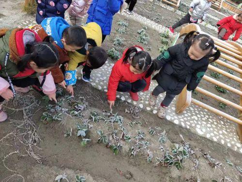 http://www.weixinrensheng.com/jiaoyu/1197326.html