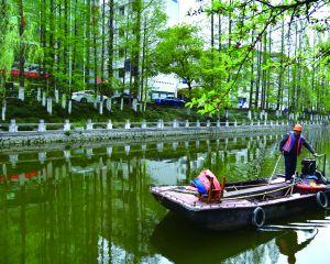 巡河護綠生態美