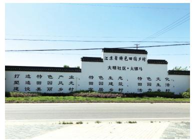如城街道大明社区:花木专业村景美物丰好风光