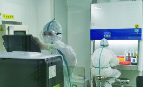 市中医院新冠病毒核酸检测实验室正式启用
