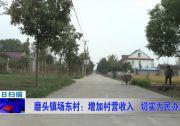 磨头镇场东村:增加村营收入 切实为民办事