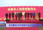 石庄镇何正村中草药产业示范园投产运营