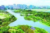 鸟瞰龙游河生态公园
